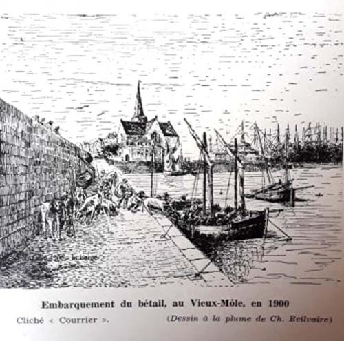 vieux-môle,saint-nazaire,patrimoine,port,porteau